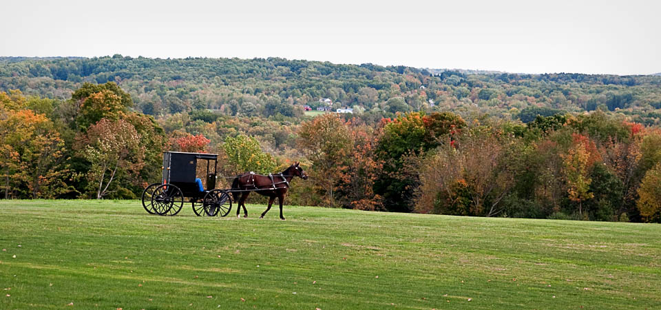witness amish and happy valley scene Campus scenes scenes of happy valley  at old main frame shop & gallery, our goal is to connect appreciators of fine art with an assortment of both local and .